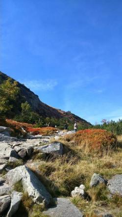 na jesiennym szlaku
