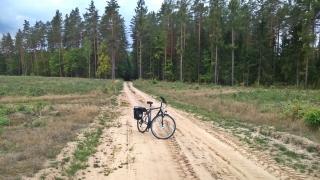 w lasach po zachodniej stronie jeziora Orzysz