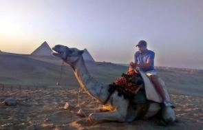 wielbłąd czasem odmawia współpracy