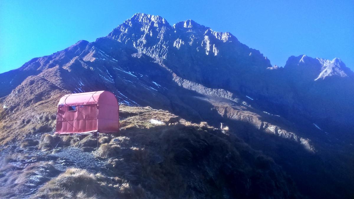 Gdy trekking zamienia się w alpinizm #adrenalina