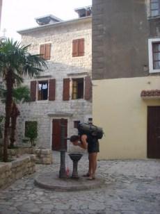 Laska się ożeźwia w Kotorze