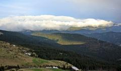 fen nad Czarnohorą