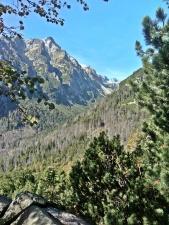 widok na Wielką Dolinę Staroleśną
