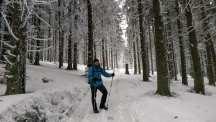 Babiogórski Park Narodowy zimą