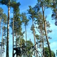 Pojezierze Iławskie + Wzgórza Dylewskie #rowerem
