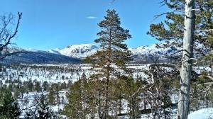 Anderdalen Nasjonalpark, Senja, Norwegia