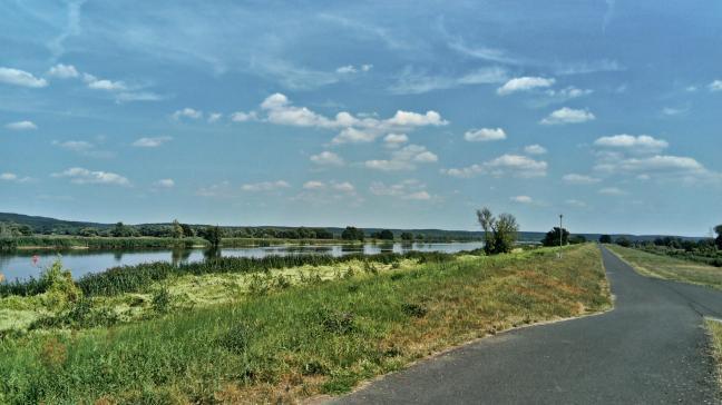 trasa rowerowa nad Odrą