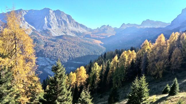 jesień w Dolomiti di Brenta, Italy