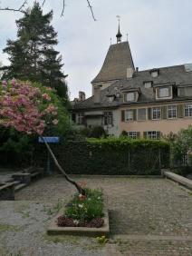 skwerek, Zurych