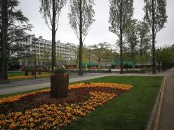 ogrody w Lucernie