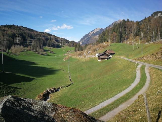 linie kojowe w Szwajcarii poprowadzono nawet w najtrudniejszych zboczach