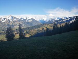 Alpy Berneńskie