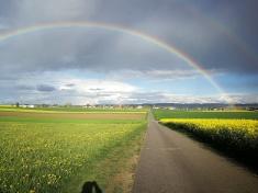 tęcza nad polami kantonu Vaud