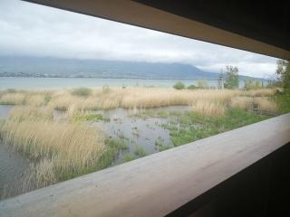 platforma obserwacji ptaków na jeziorze Neuchatel