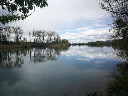 rzeka Aere przed Solurą