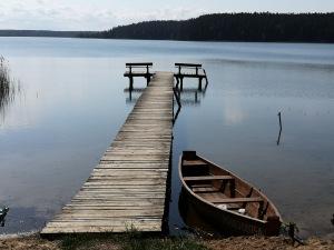 wschodni brzeg jeziora Wigry