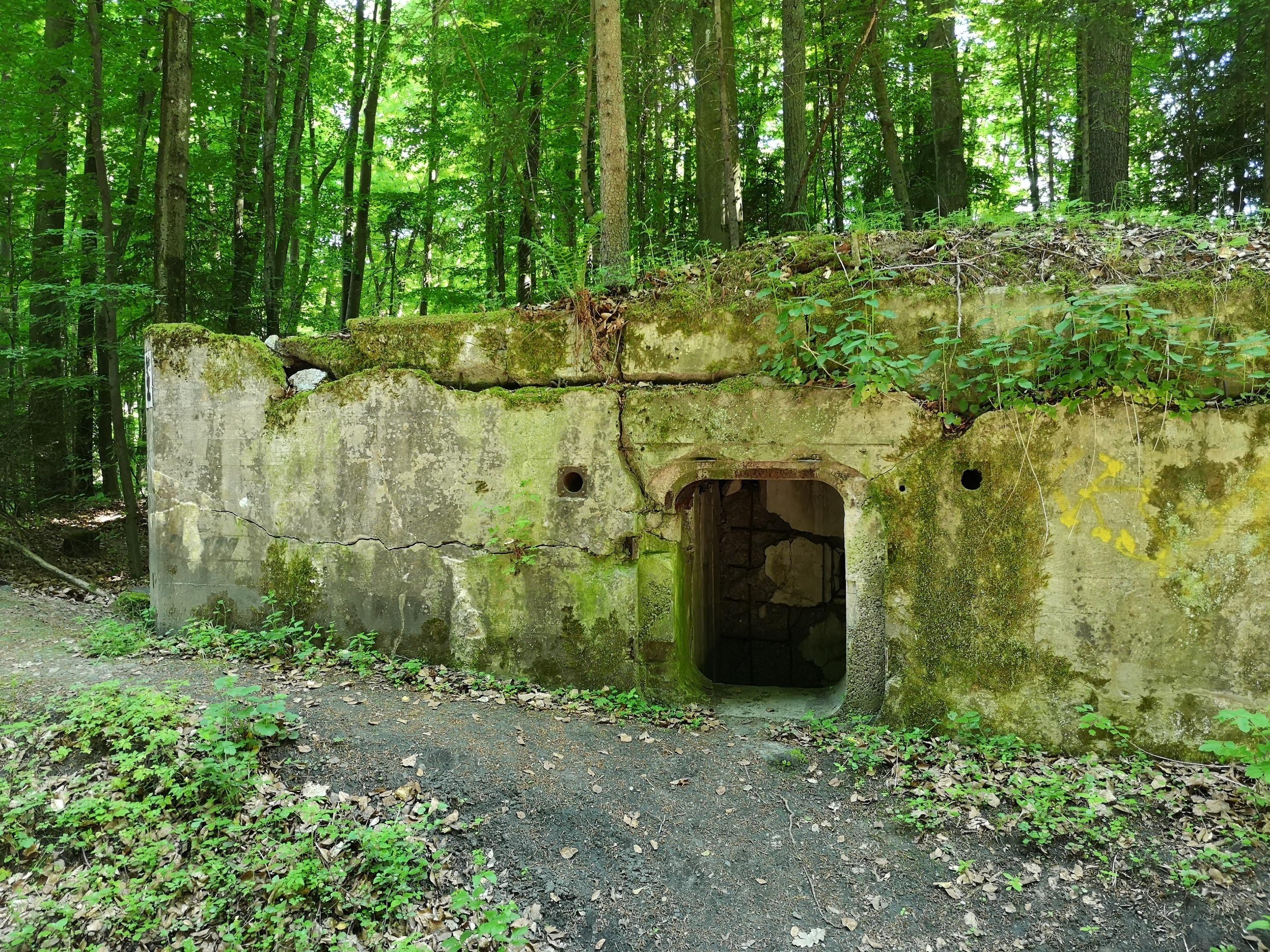 bunkry w lesie w drodze do Szczecinka